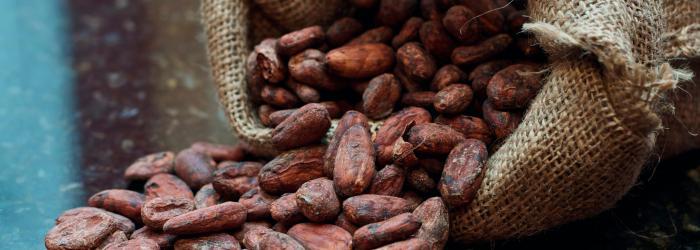 alkalinity-of-cocoa-ash