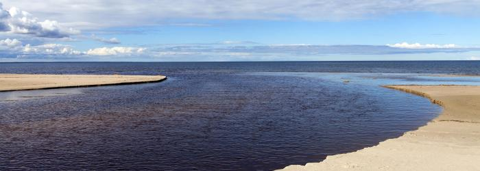 environmental-marine-parameters-in-bacterial-growth-media